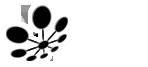 blacksanddev